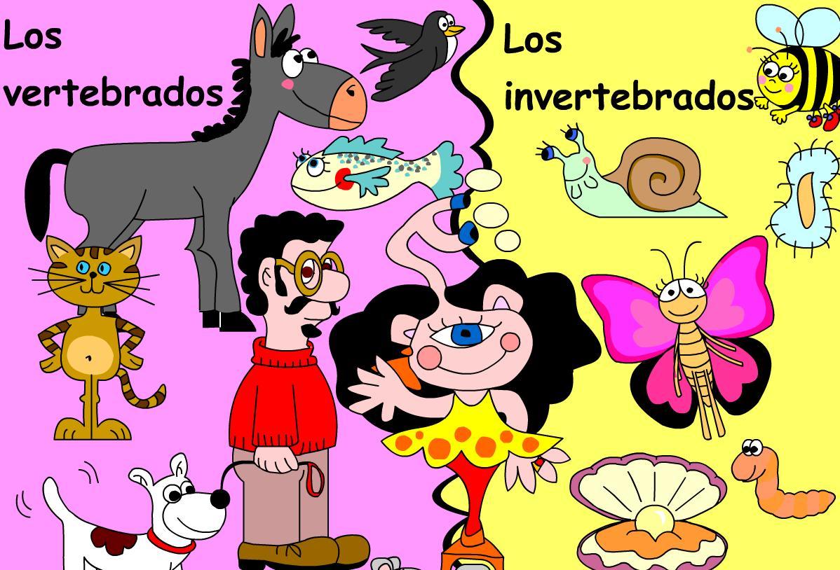 Manualidades para explicar los vertebrados e invertebrados ...